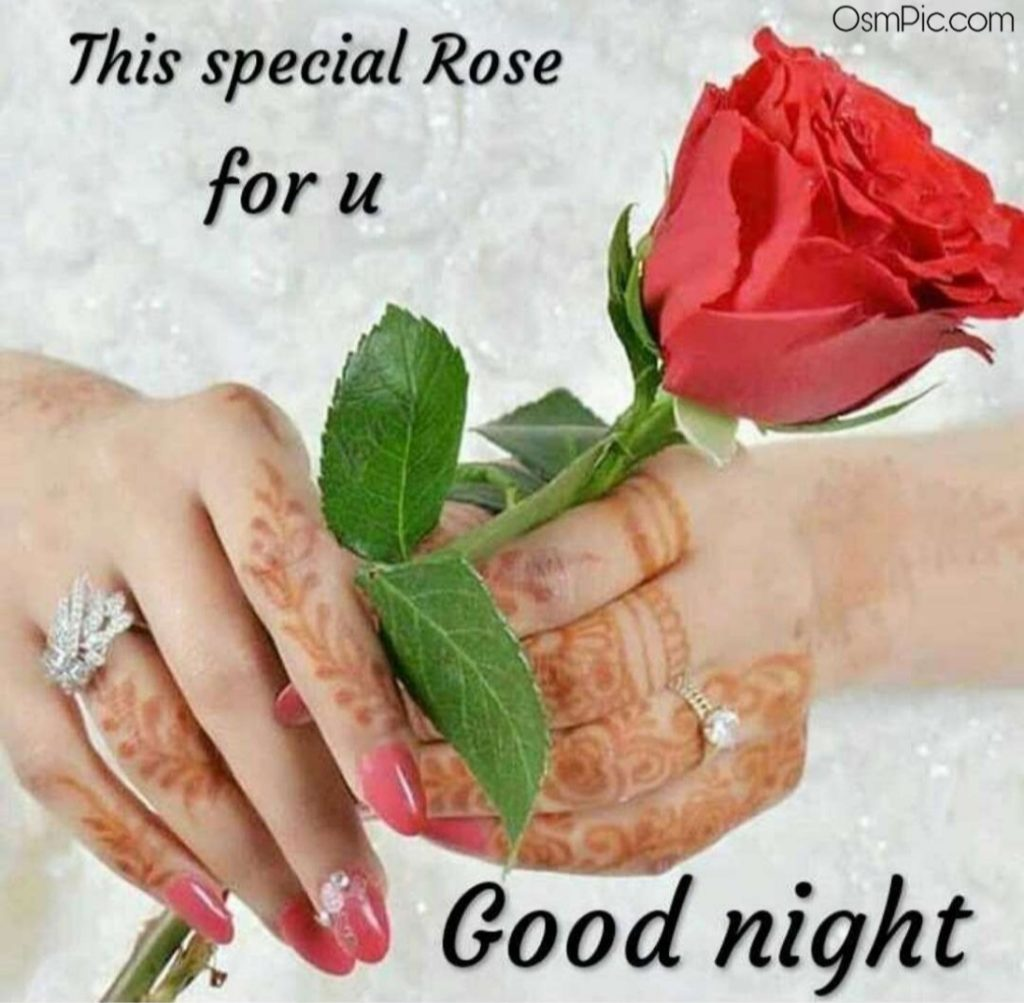 Good Night Special Rose For Love With I Love You Message