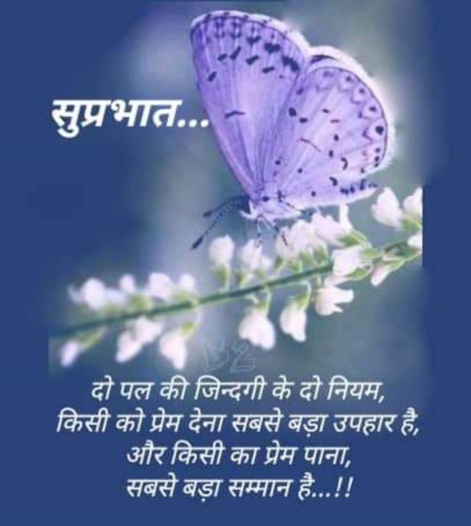 Good morning quotes in hindi on love