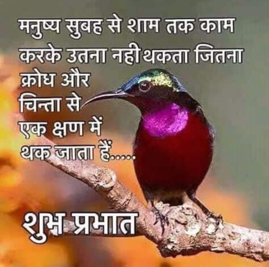 Good morning best quotes images in hindi