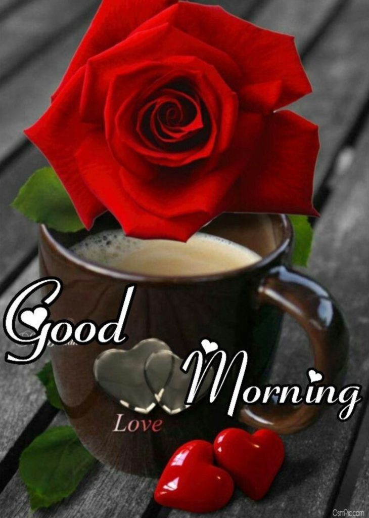 Free all good morning image hd for lover download 2019