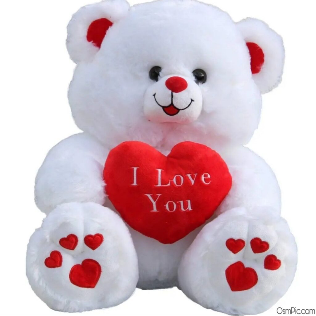 Teddy Bear With I Love You Images For Lovers