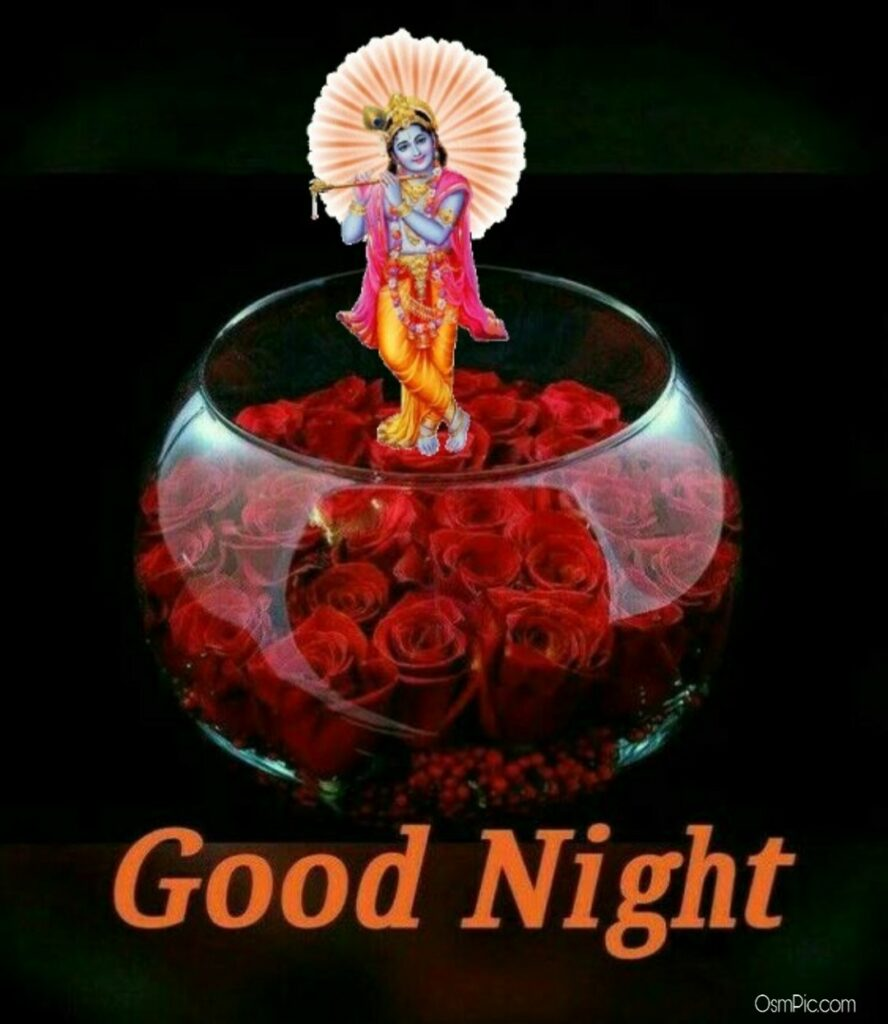 Beautiful Good Night God Image With Rose's Free Download