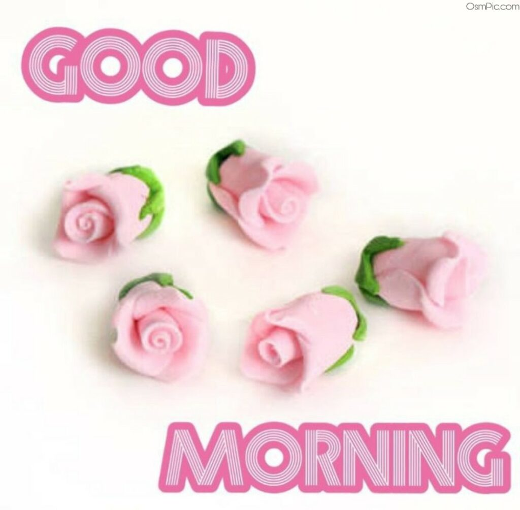 Awesome Good Morning Images Pictures , Photos For Whatsapp & Fb