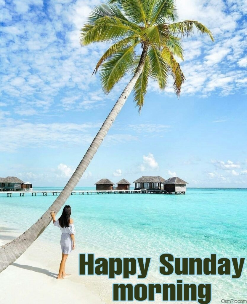 good morning happy sunday hd images Pictures Photos hd Wallpaper Free collection