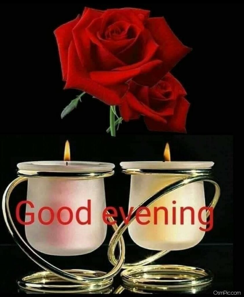 Good Evening Flowers Images Pictures Photos hd Wallpaper Download