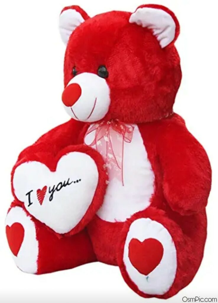 teddy bear images with i love you