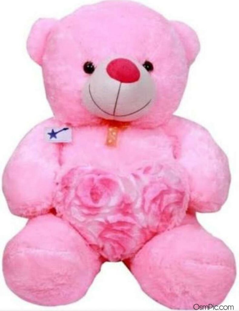 Pink beautiful big teddy bear images