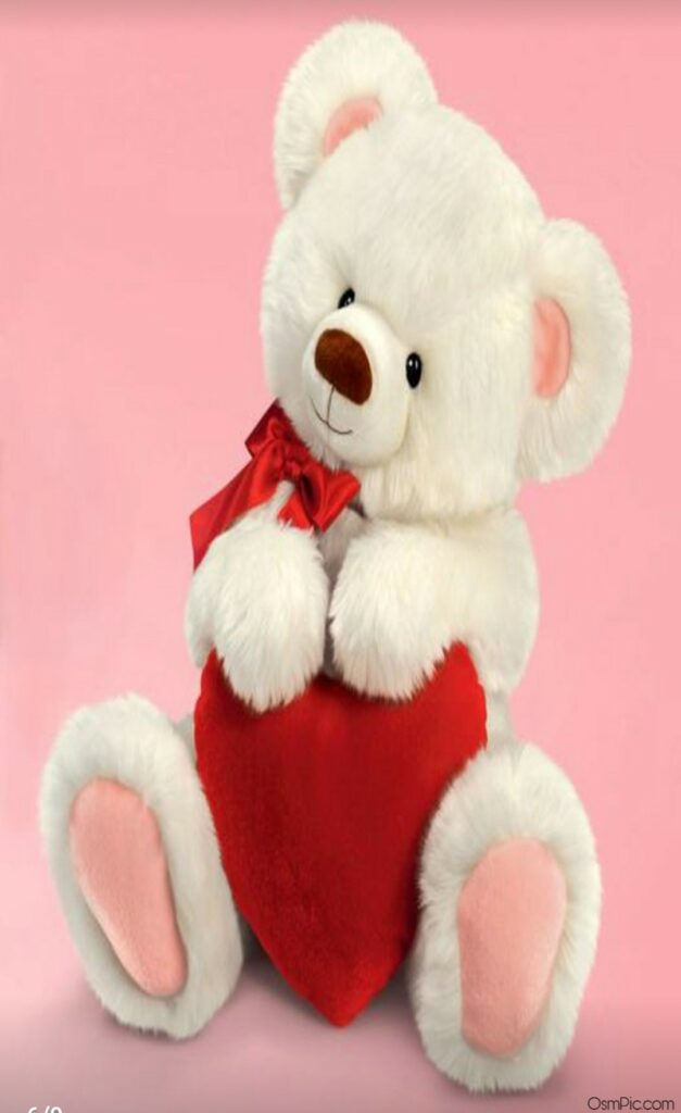 Cute Teddy Bear Images With Love For Whatsapp Dp