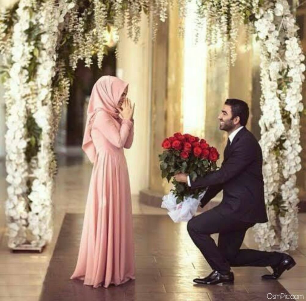 Boy proposing a girl with red Rose's Picture