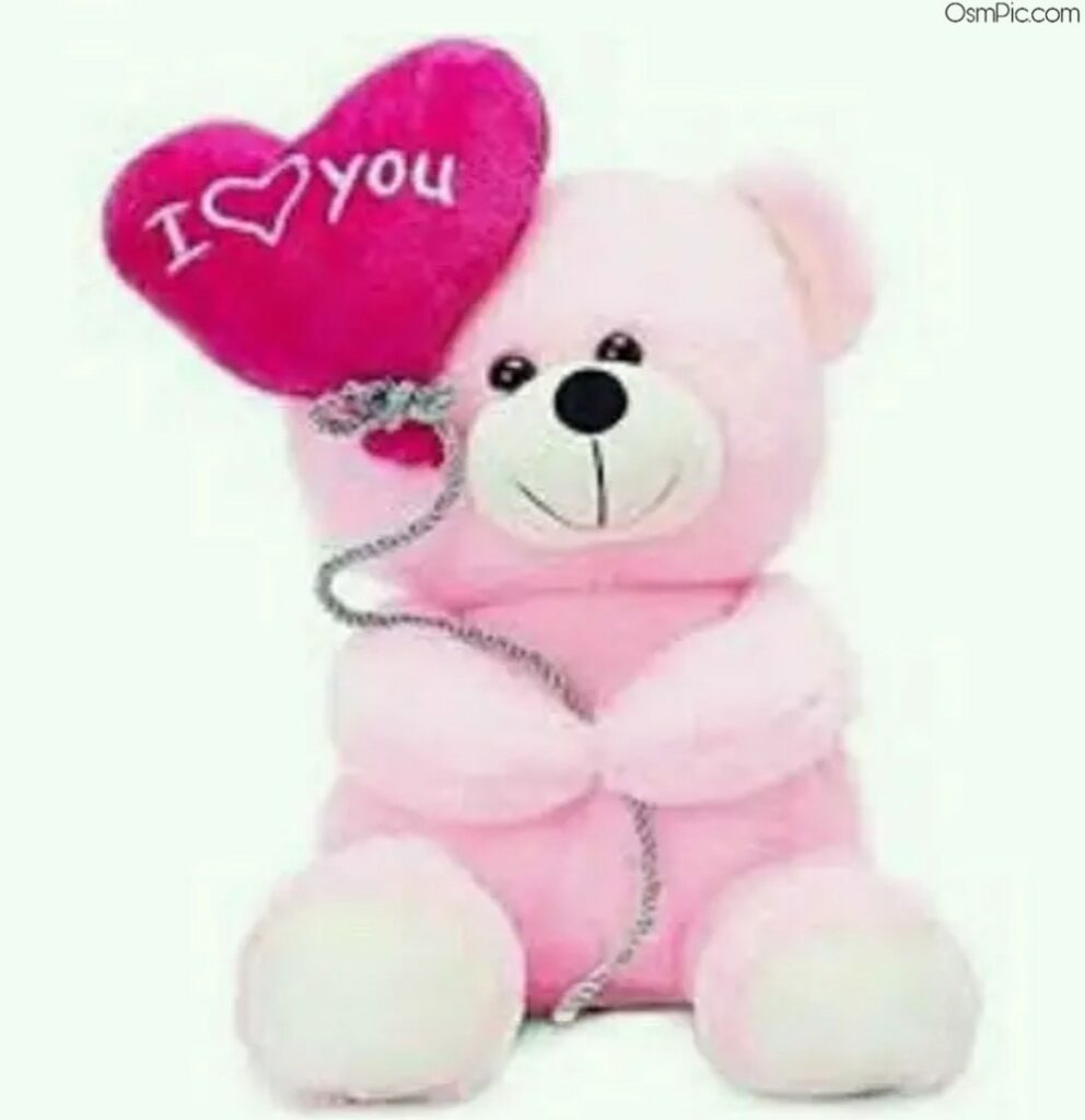 Whatsapp dp love teddy Bear