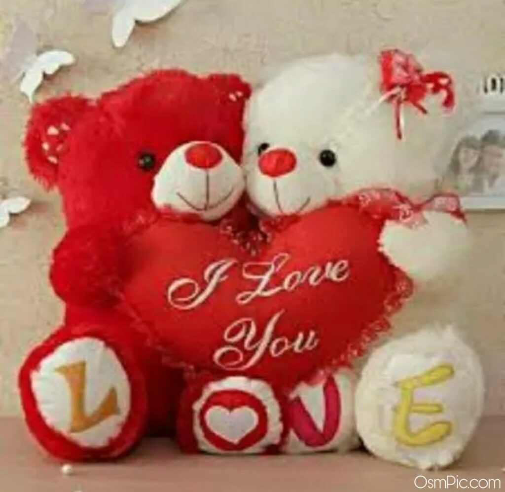 Whatsapp dp I love you teddy Bear photo