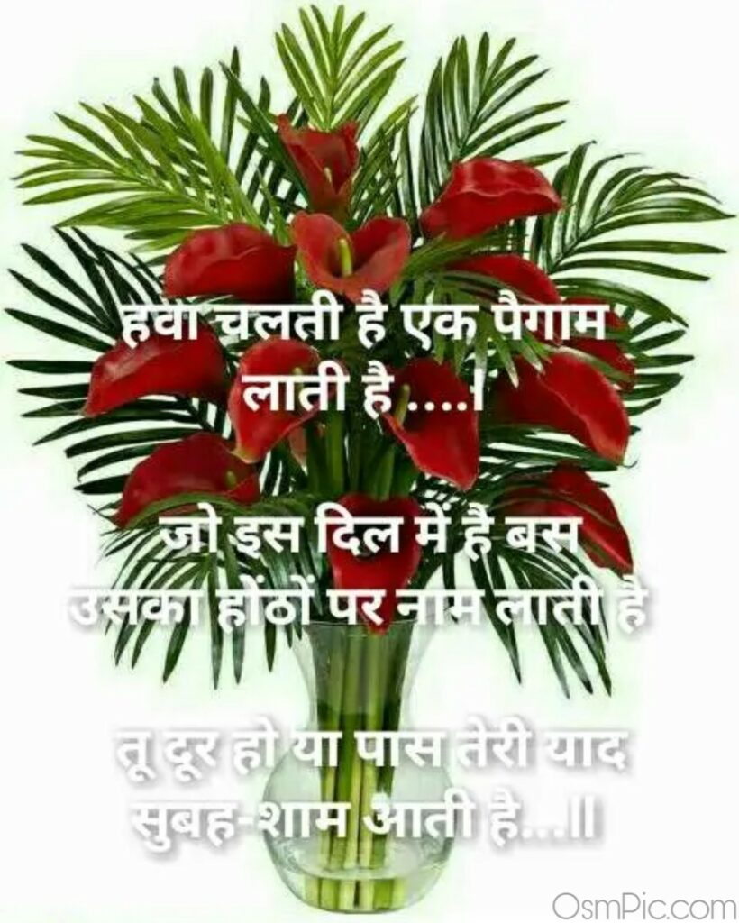 Whatsapp dp love Shayari Download