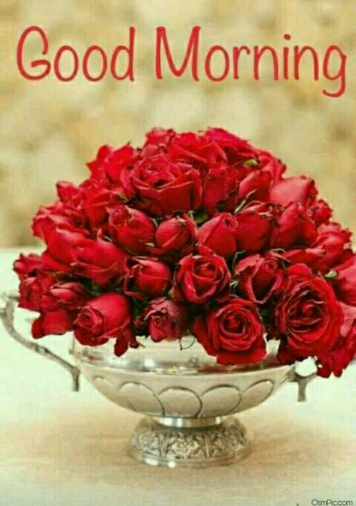 Beautiful Good Morning Red Roses Pic Download