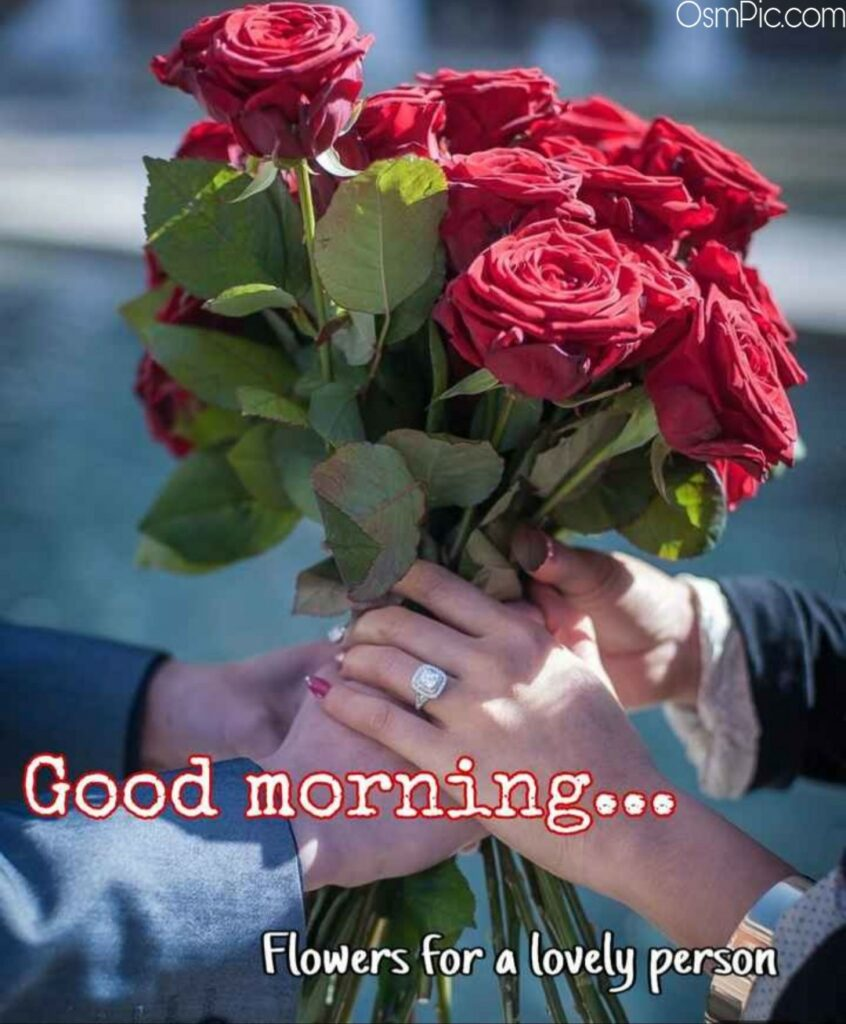 Good Morning Flowers For A Lovely Person