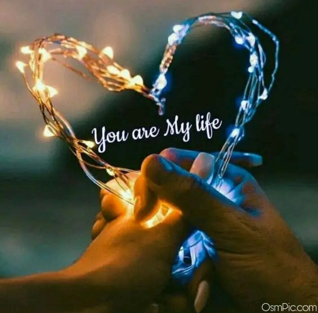 My life is you