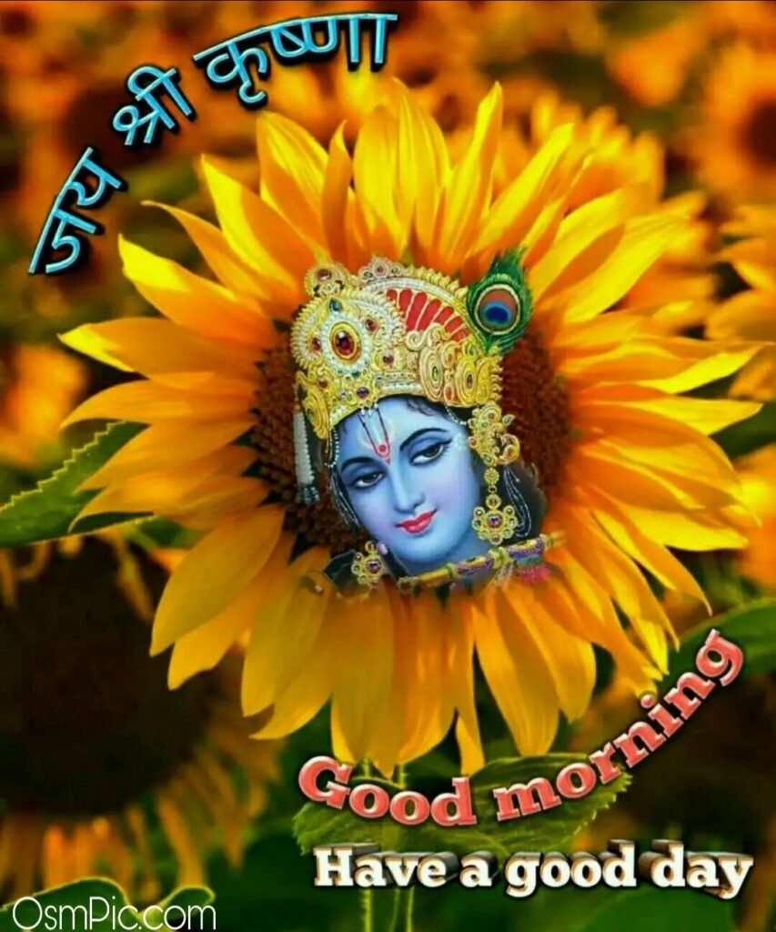 Jai shri Krishna Latest Good Morning Images God Pics