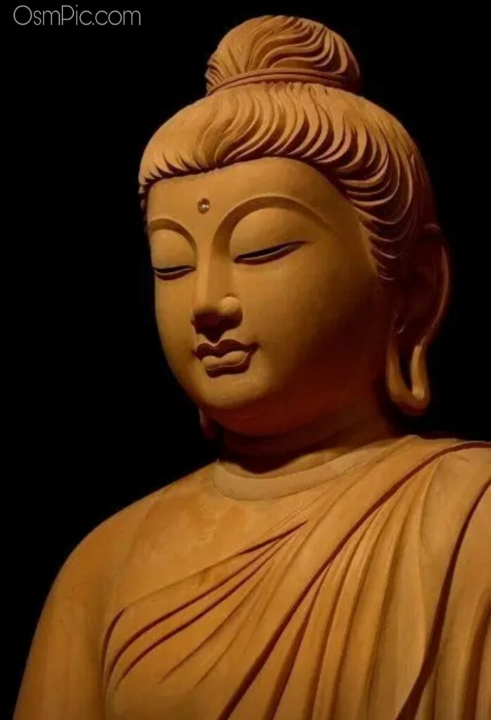 Top 50 Gautam Buddha Images Quotes Photos HD Wallpapers Hindi Status