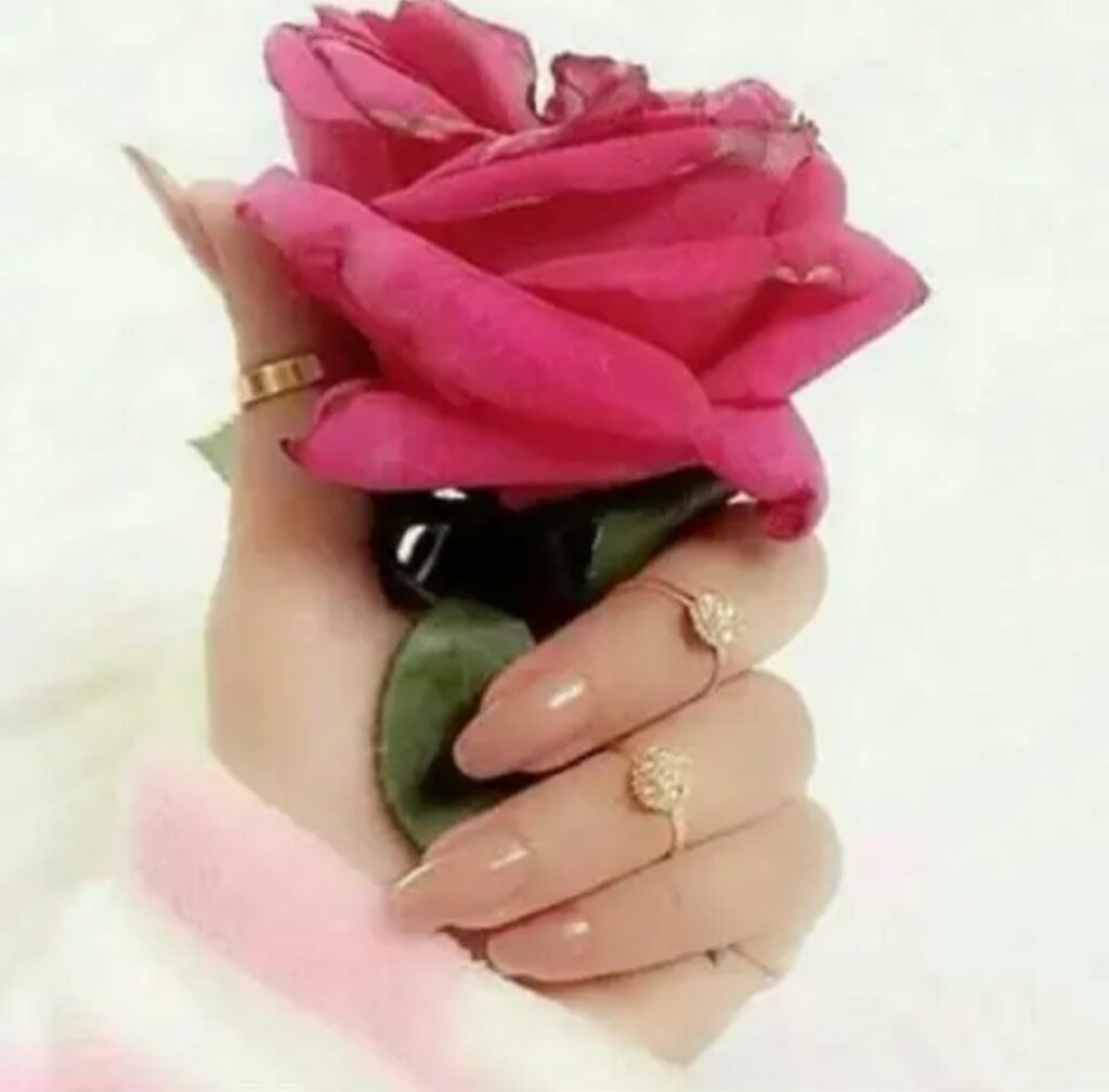 Beautiful girls hand with Red rose