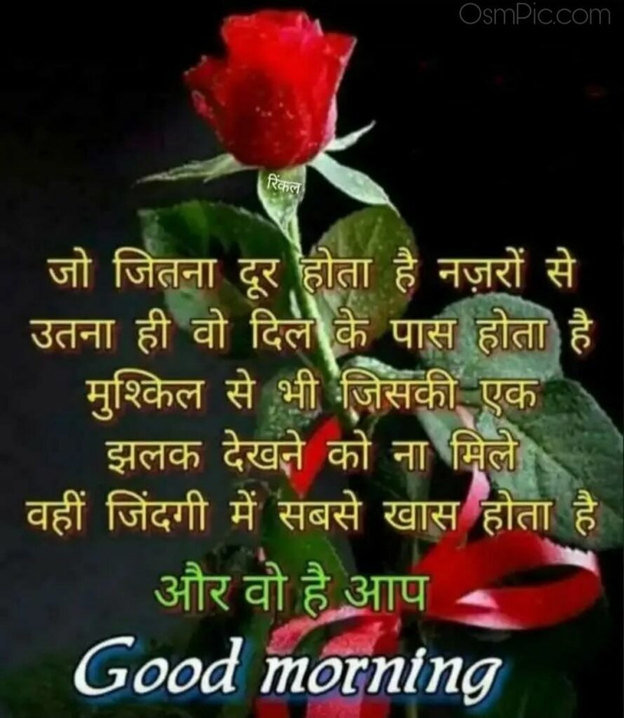 Good morning rose flowers wishes with Quotes in hindi