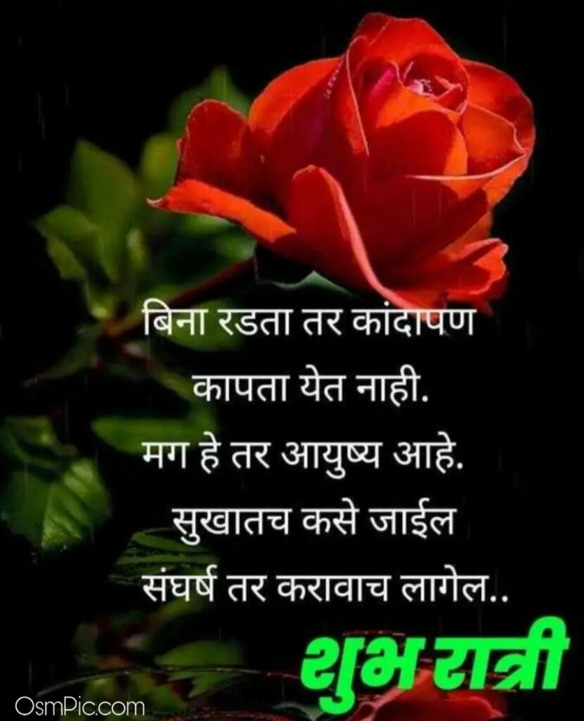 Good Night Images with Quotes In Marathi With Flowers