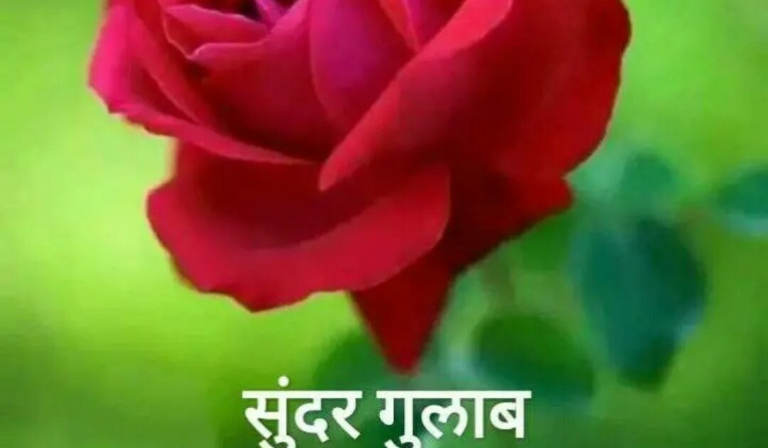 Latest Good Morning Marathi Images Quotes Status Msgs For Whatsapp