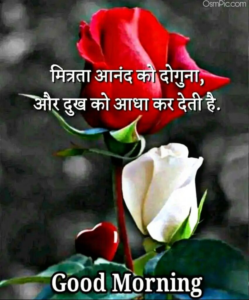 Most Beautiful Hindi Good Morning 2020 Image With flowers and Quotes