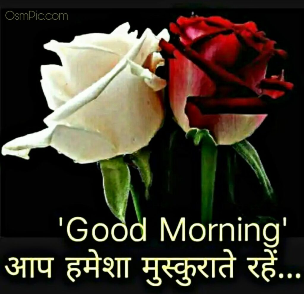 2020 Best Good Morning Flowers With Hindi Quotes