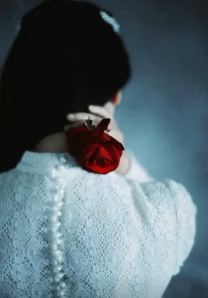 Alone girl with red rose