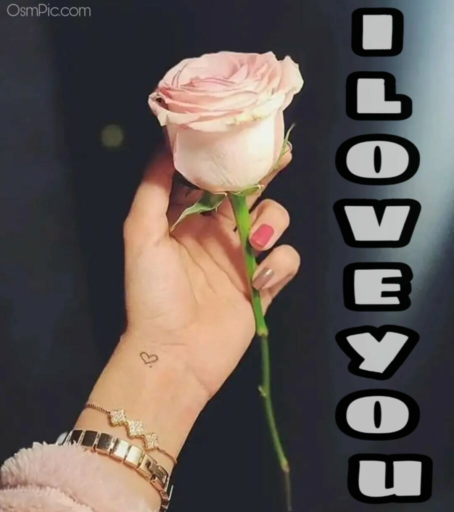 I love you rose image for girls to send boyfriend