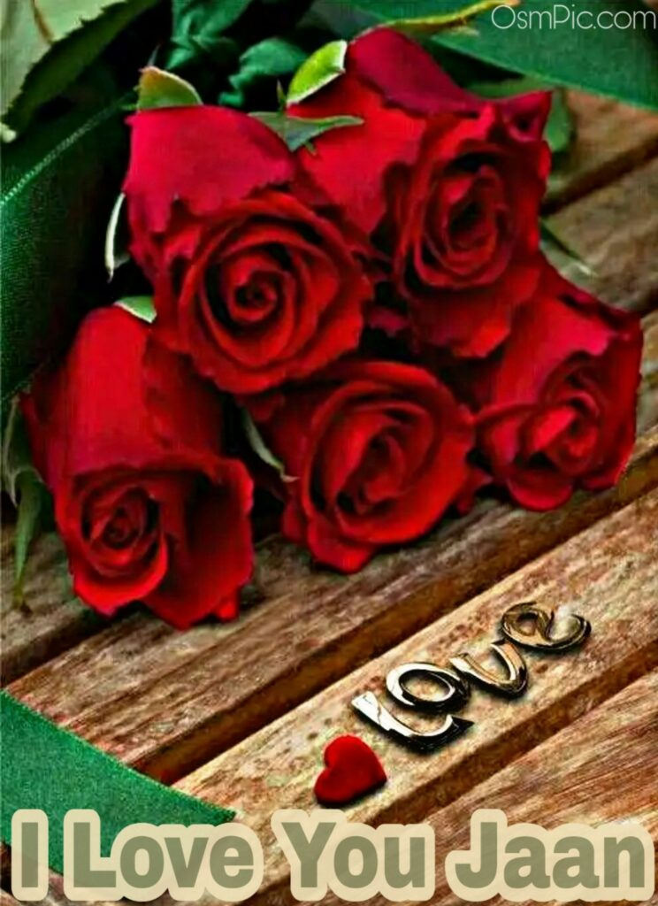 50 Most Beautiful I Love You Roses Images Pics Of Love Roses For Lovers I Love You Jaan