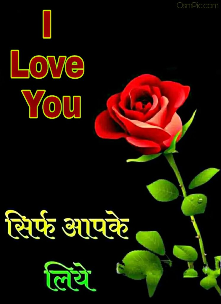 I love you image with rose in hindi for lovers