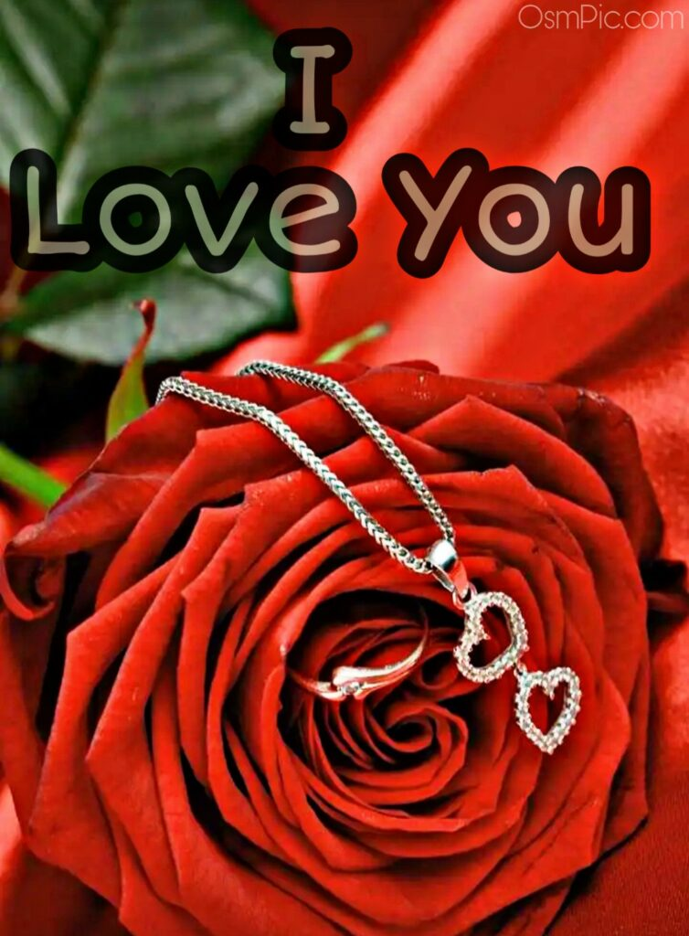 I love you rose for girlfriend