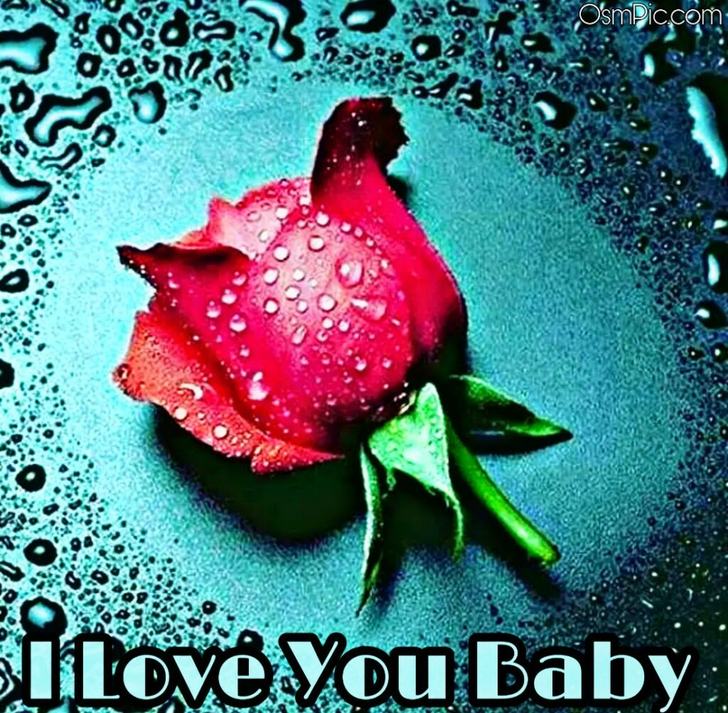 I love you baby red rose photo download