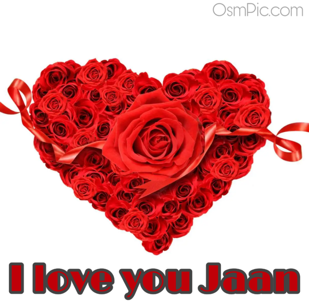 I love you jan