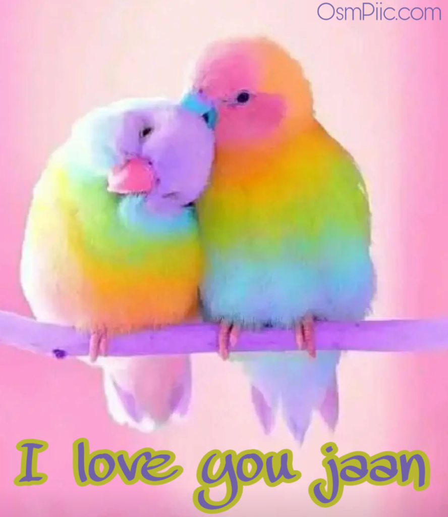 i love you jaan images free download