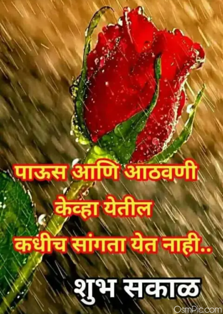 Good morning mage with rose in marathi