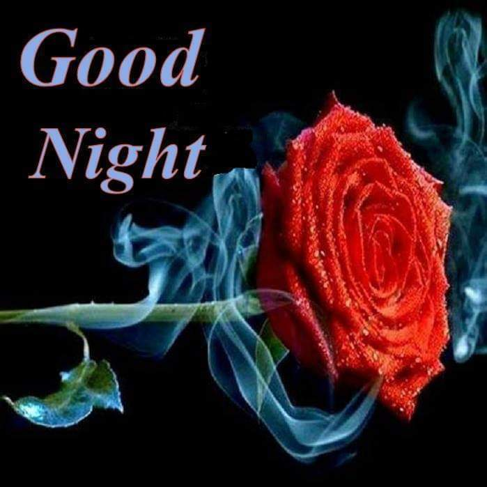 Good night red rose pic for item