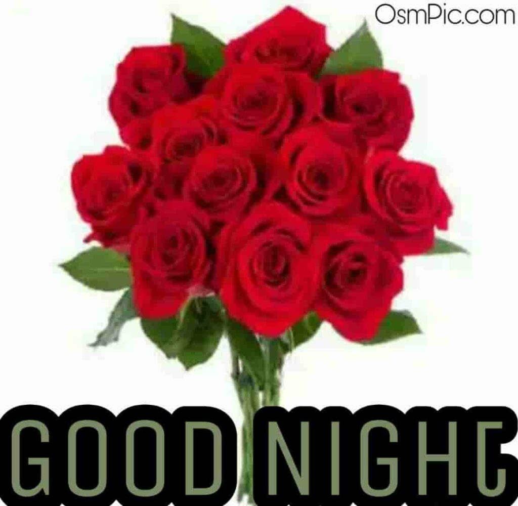 Good night red roses pic for rose day