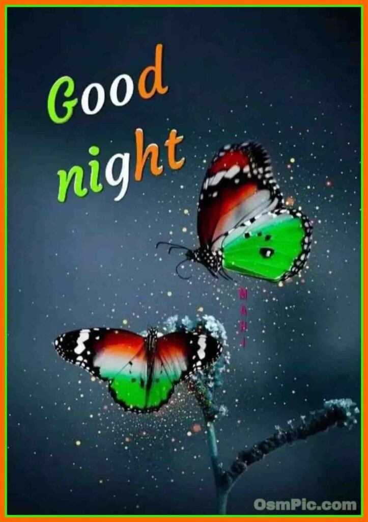 Good night Indian flag color