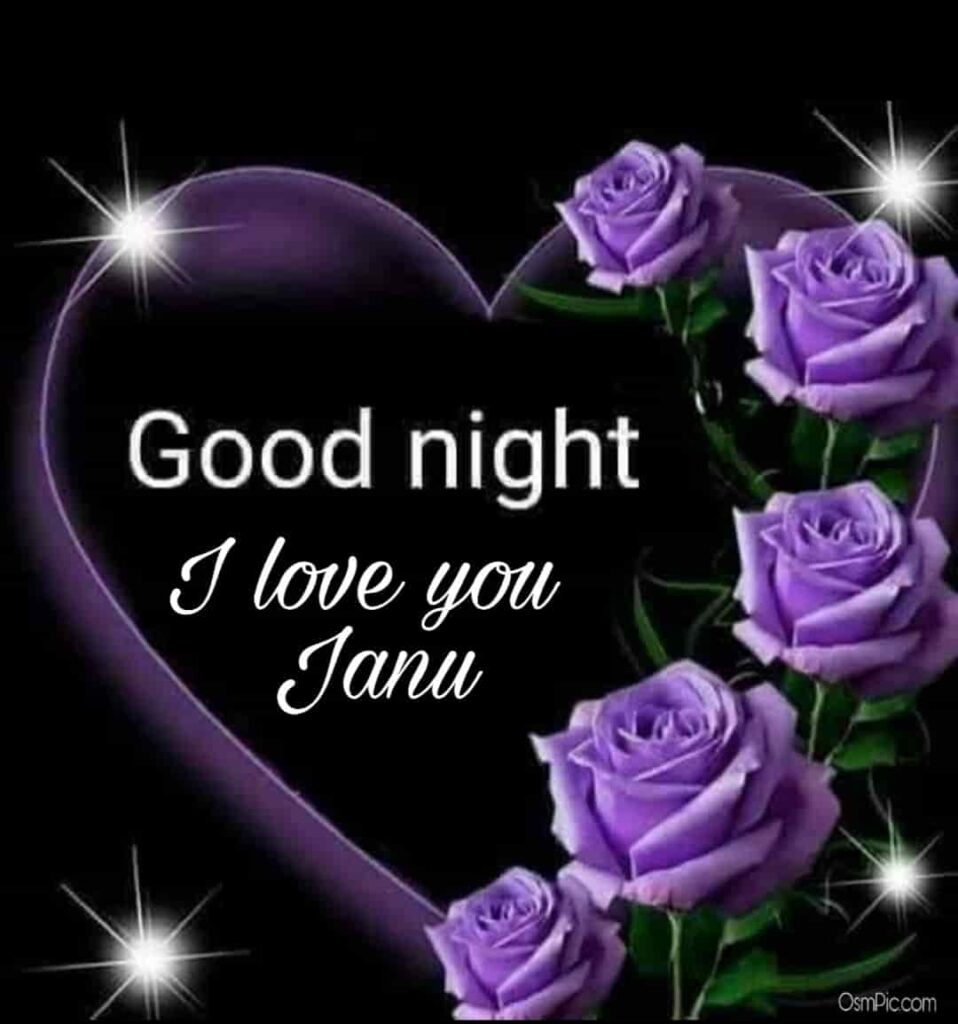 Beautiful i love you janu good night image