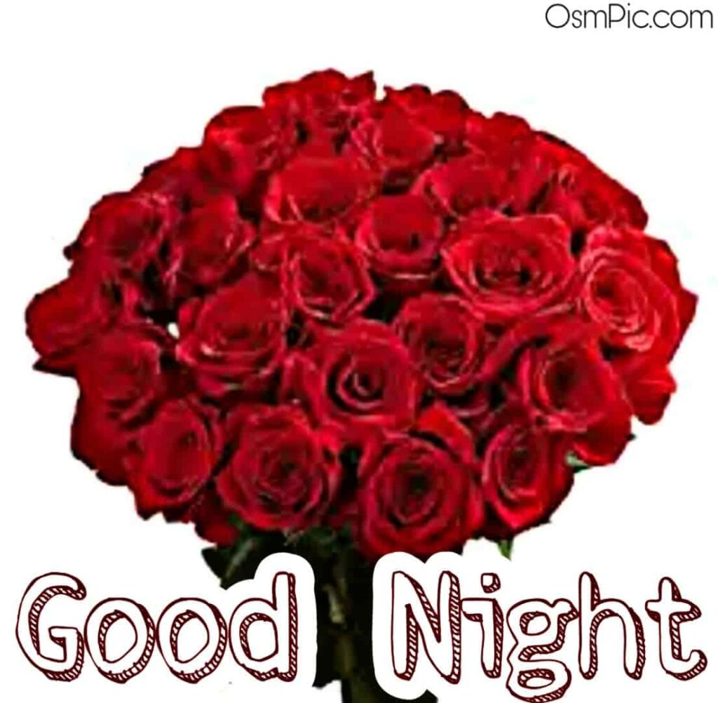 Good night red roses bunch