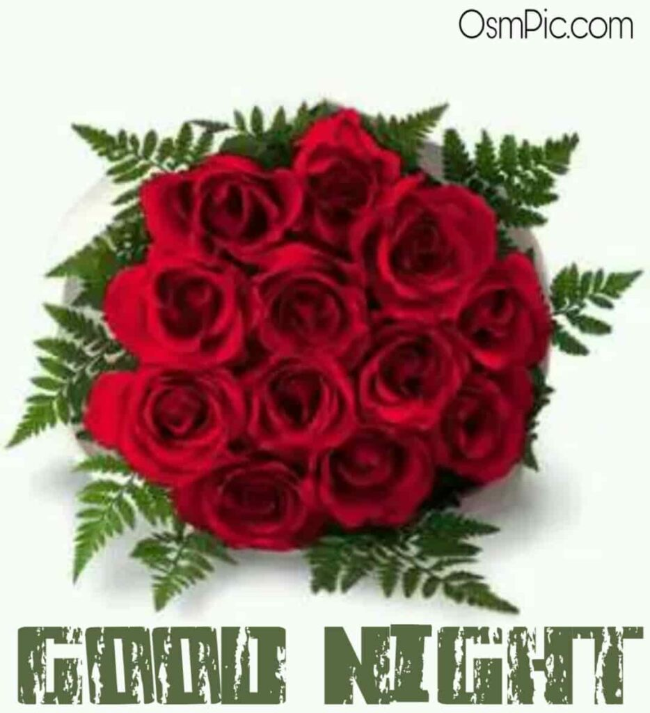Good night red roses for love