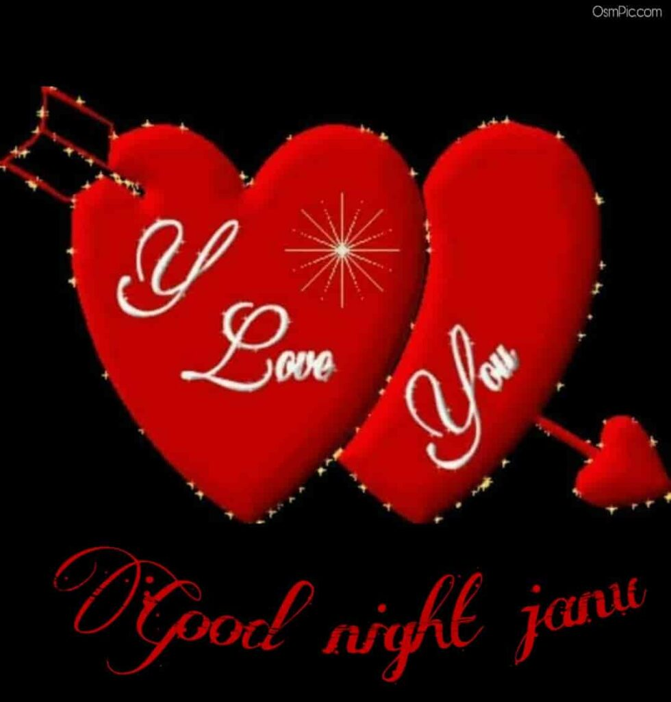 Good night Janu i love you
