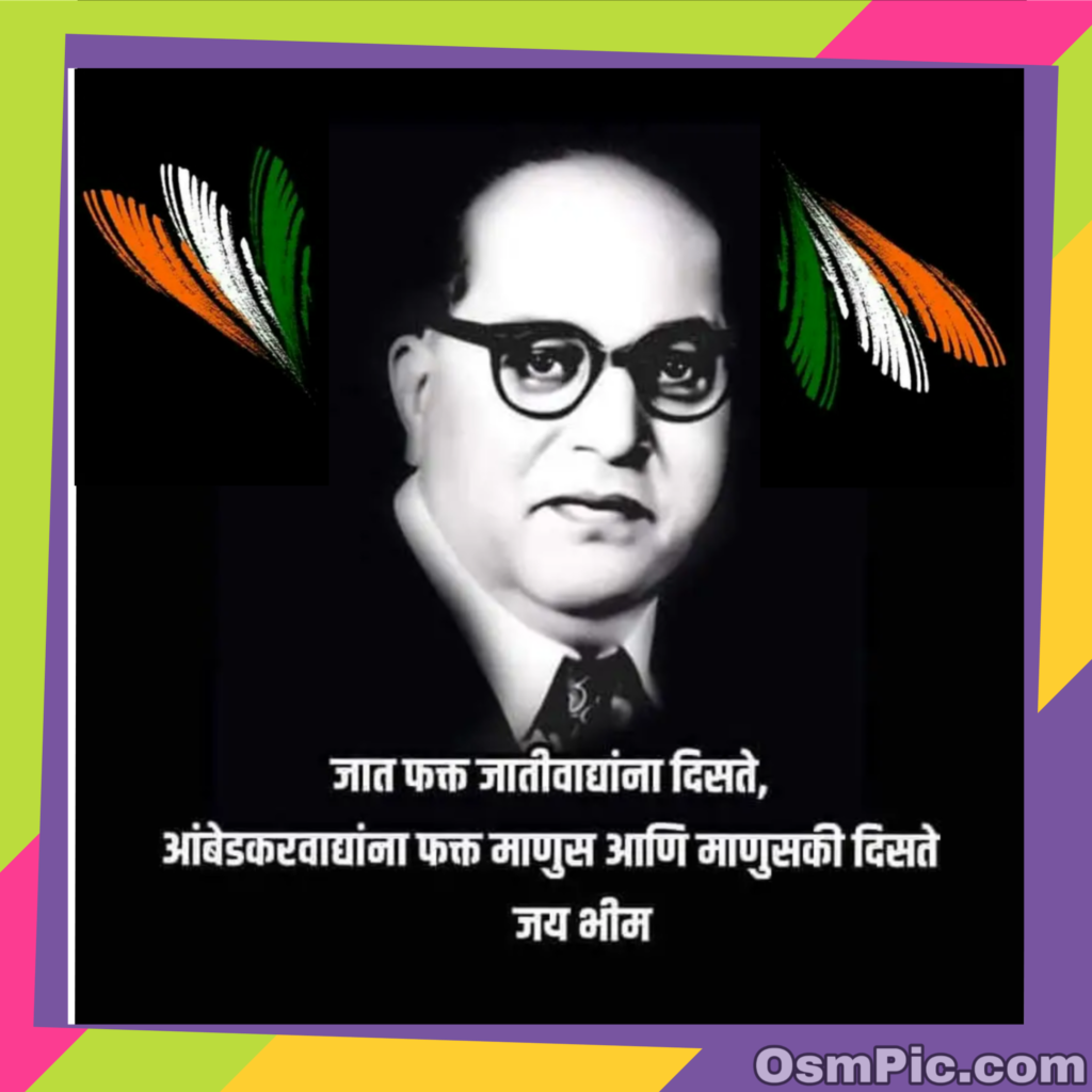 ambedkar tiranga photo