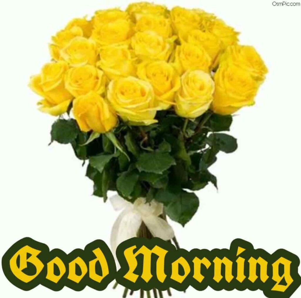 Yellow roses good morning pic for friends